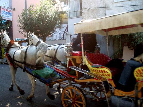 18. Horse taxi